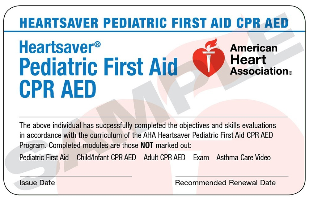 International Heartsaver Pediatric First Aid Cpr Aed Course Cards 24